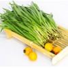 韭菜重金属检测项目,韭菜农残检测报告