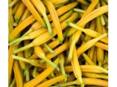 黄花菜农药残留检测机构,黄花菜重金属检测项目