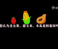 食品有意思:圣女果、甜玉米和木瓜是转基因食品吗? (600播放)