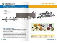 天然工程营养强化大米加工设备