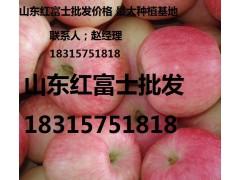 18315751818膜袋红富士苹果0.6毛