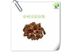 松树皮提取原花青素含量95%供应