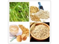 燕麦粉 纯燕麦粉