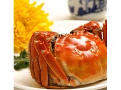 螃蟹抗生素检测报告,螃蟹质量检测机构,螃蟹营养检测项目