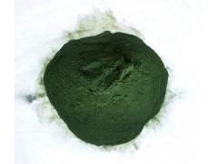 生产螺旋藻粉 螺旋藻粉价格批发