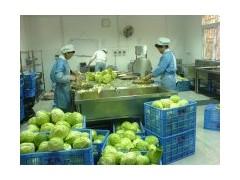 果蔬加工设备,配套加工现场安装