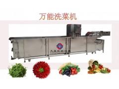 中央厨房配套生产线厂家,蔬菜处理前生产线,全方位定做