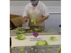 中央厨房生产线,净菜加工配餐生产线,学校饭堂蔬菜加工设备
