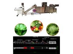 大型中央厨房生产线,净菜加工生产线,水果加工流水线,电议