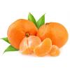 求购--橘子