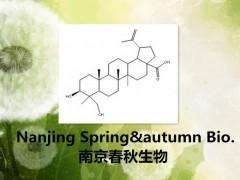 23-羟基白桦酸 85999-40-2 标准品 高纯分离提取