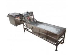 清洗风干线 蔬菜清洗-除水一体机 豪联HLXF-5000型