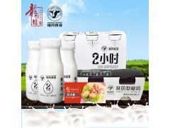 【现代牧业】鲜牛奶酸奶组合套装 套餐A