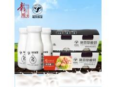 【现代牧业】鲜牛奶酸奶组合套装套餐B