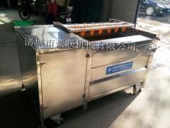 豪联HLXM-1000型毛辊式清洗机 /罗汉果清洗机