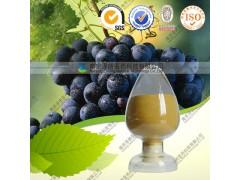 白藜芦醇 白藜芦醇10~98% 厂家现货 质量保障