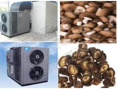 空气能香菇烘干机  香菇干燥机设备厂家