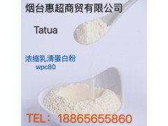 Tatua浓缩乳清蛋白 粉wpc80