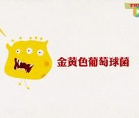 国家食品安全风险评估中心科普:拥有秘密武器的金黄色葡萄球菌 (183播放)