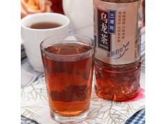 三得利乌龙茶价格 饮料批发