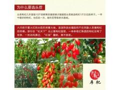 高端枸杞生产厂家/中高端枸杞礼盒定制