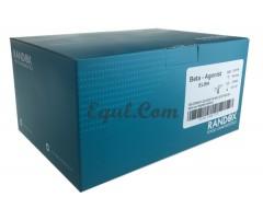 RANDOX 牛奶检测 氯霉素检测试剂盒