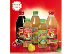 进口果汁tamm汤米NFC健康果汁智利原果压榨无添加