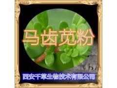 马齿苋浓缩粉厂家生产提取物马齿苋水溶粉 定做马齿菜流浸膏