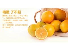 大个头橙子鼓泡清洗机 大小个头均适用 无损伤橙子清洗机除水机