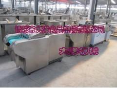 大洋牌蒜薹切段机,DQC1000蔬菜切割机