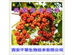 吴茱萸提取物 纯植物提取