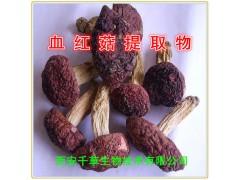血红菇提取物 血红菇浓缩粉 厂家生产动植物提取物 定做流浸膏