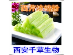 西芹浓缩粉 厂家生产水溶性动植物提取物 流浸膏