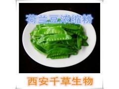 荷兰豆浓缩粉荷兰豆提取物厂家生产动植物提取物 流浸膏颗粒