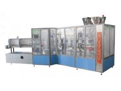 ZH100全自动装盒机