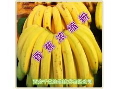 香蕉天然提取物香蕉浓缩粉厂家生产提取物