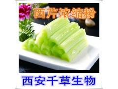 水溶性西芹天然提取物浓缩粉 厂家生产定做西芹流浸膏