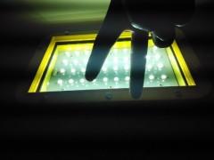 灭蚊器-CBY-1*20-化工-专用-灭蚊灯 -20W