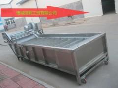 供应全自动大白菜清洗机