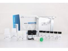 维德维康青霉素酶联免疫试剂盒