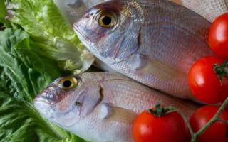 关于多地超市活鱼下架,食品人怎么看?