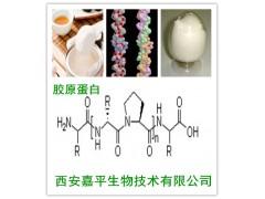 西安嘉平供应胶原蛋白 I 型 Ⅱ型