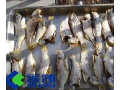 金凯鱼干烘干机厂家直销 鱼干烘干机价格