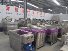 DYZ系列炸薯条的机器,大洋牌多功能油炸炉