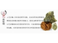 有机云芝提取物 云芝多糖 提高免疫力 优质云芝粉包邮