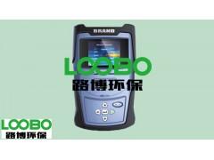 路博环保现货供应LB-SP-FDB3吊白块快速检测仪