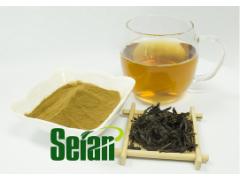 乌龙茶提取物 乌龙茶浓缩液 速溶乌龙茶粉