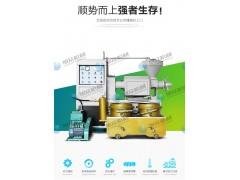 花生油生产线 芝麻榨油机 菜籽榨油机 真空滤油一体榨油机