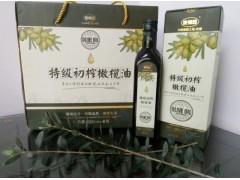 陇锦园特级初榨橄榄油500ml