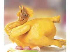 英佳尔童子鸡技术培训只要1200